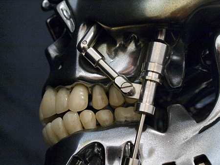 The Animatronic Bust uses fake teeth for its texture