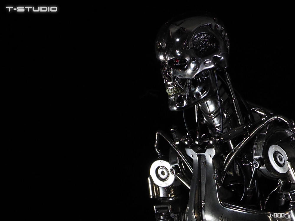 T-STUDIO Endoskeleton